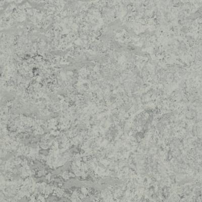 FORBO MARMOLEUM OHMEX mist grey